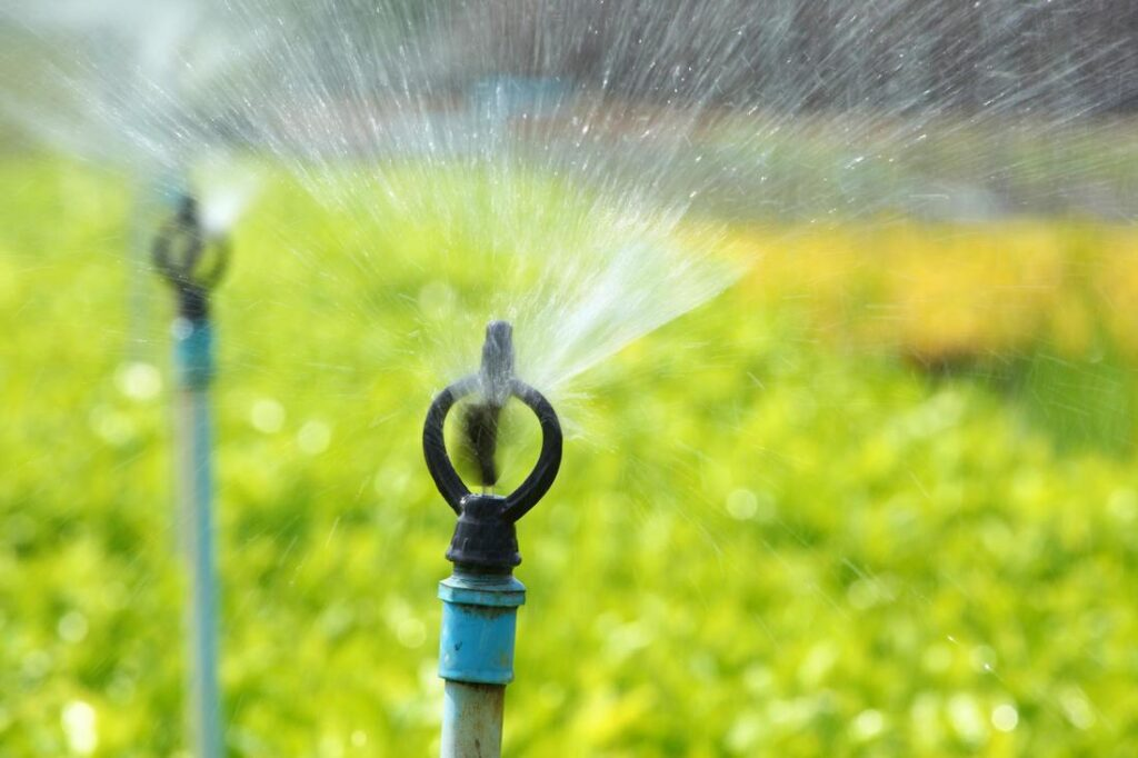 Sprinklers Services